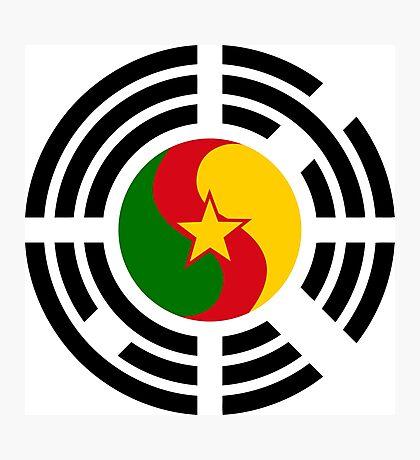 Korean Cameroonian Multinational Patriot Flag Series Photographic Print