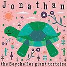 Jonathan The Tortoise by CarlyWatts