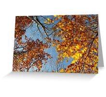Heavenly Nature Greeting Card
