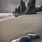 Seastacks at Rialto Beach by Carrie Cole