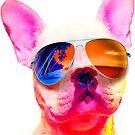 FRENCH BULLDOG DOG WEARING SUNGLASSES COLORFUL PUPPY RAINBOW by MyHandmadeSigns