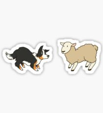 Come Bye - Tri-color dog and white sheep Sticker