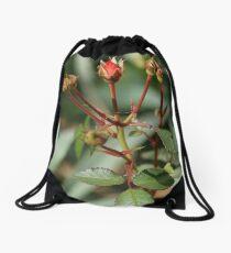 Rose Buds Drawstring Bag