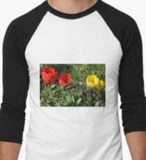 Tulip Double Date Men's Baseball ¾ T-Shirt