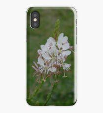 Scarlet Guara iPhone Case/Skin