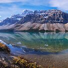 Crowfoot Reflection by Chad Dutson