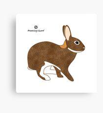 Chestnut Agouti Rabbit Canvas Print