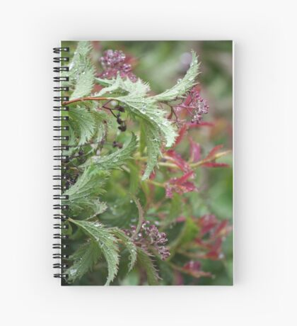 Rained over Spiral Notebook