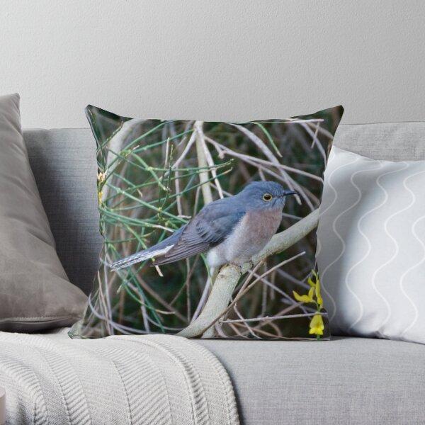 CUCKOO ~ Fan-tailed Cuckoo Q9LDHQBS by David Irwin Throw Pillow