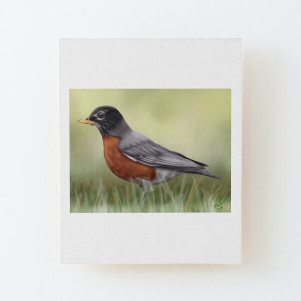 American Robin Wood Mounted Print