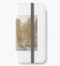 Andrew Maccallum 'Silvery Moments, Burnham Beeches',  iPhone Wallet/Case/Skin