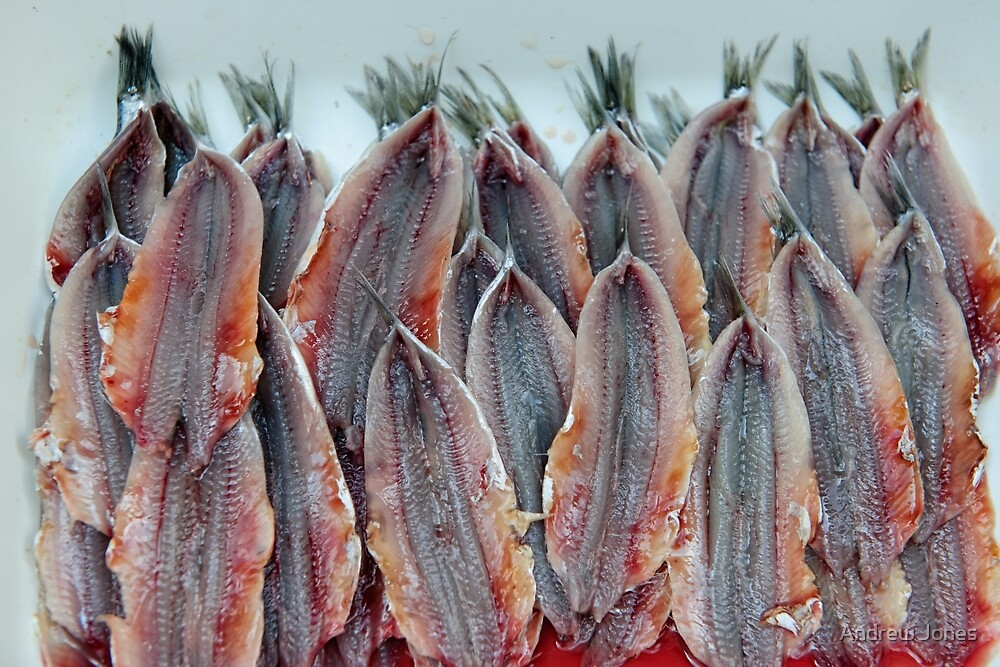 Neatly filleted anchovies, Amalfi, Campania, Italy by Andrew Jones