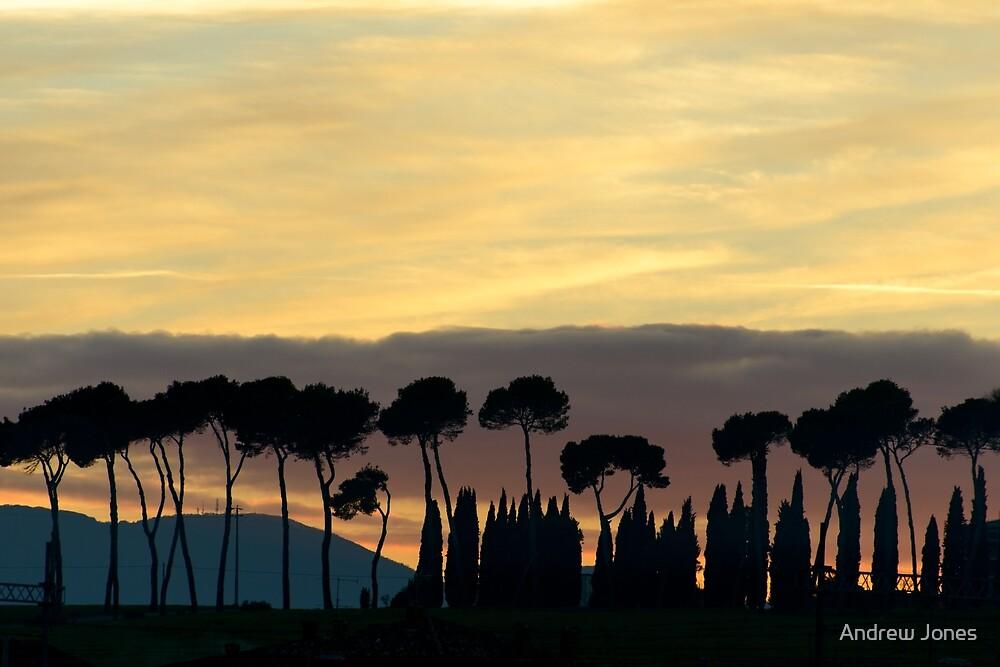 Sunset from Pineta, Lago Trasimeno by Andrew Jones