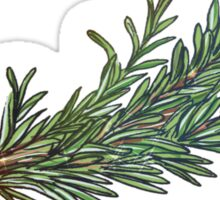 Dried Rosemary Sticker