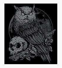 Night Watcher Photographic Print