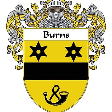 Burns Coat of Arms/Family Crest by IrishArms
