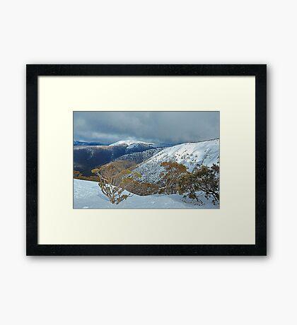 Snowy Mountains Views- Victorian Alps National Park ,Victoria Australia Framed Print
