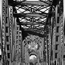 Richmond Texas Rail Road Bridge by Nathan Little