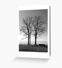 Solitude #2 Greeting Card
