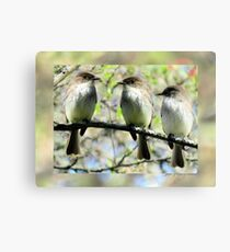 Little Brown Birds Of Spring Canvas Print
