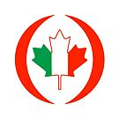 Irish Canadian Multinational Patriot Flag Series by Carbon-Fibre Media