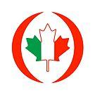 Irish Canadian Multinational Patriot Flag Series by Carbon-Fibre Media