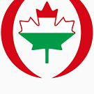 Hungarian Canadian Multinational Patriot Flag Series by Carbon-Fibre Media