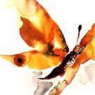 Butterfly by Dana Roper
