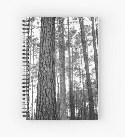 A Proper Motivation Spiral Notebook