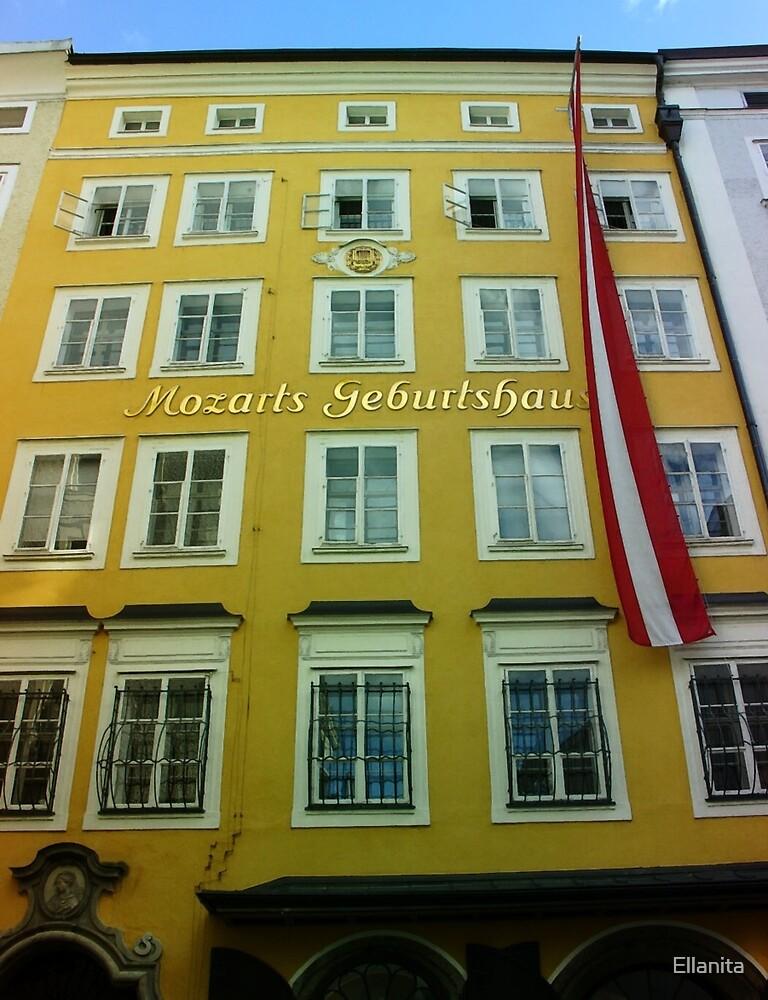 Mozart House of Birth by Ellanita