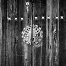 Opportunity's at The Gate by Robert McMahan