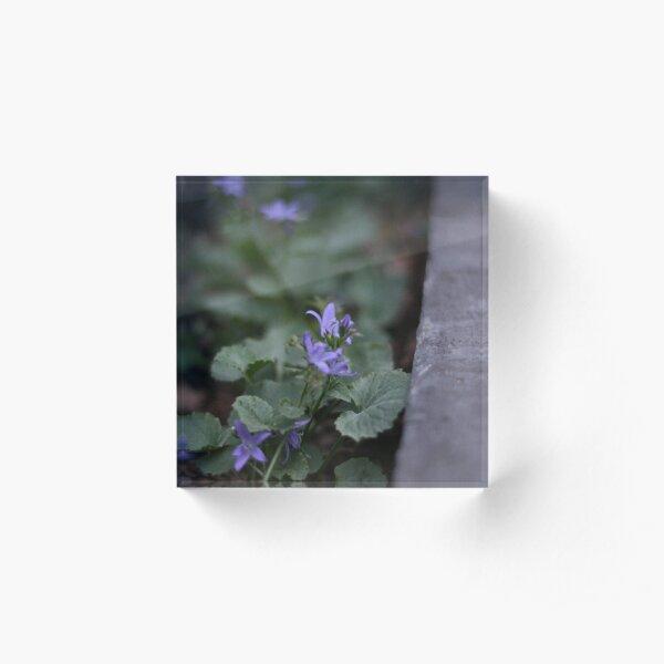 Violet Moonlight Acrylic Block