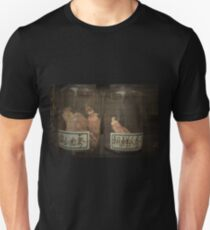 Autumn in Japan:  Ancient Remedies T-Shirt