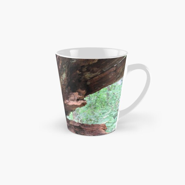 decaying fallen tree Tall Mug