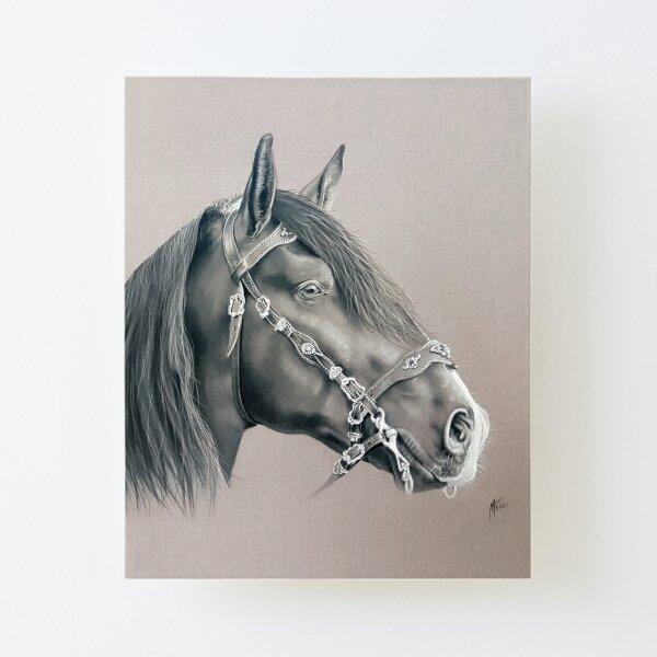 Cheval noir Impression montée sur toile