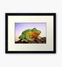 Sunrise Frog Framed Print
