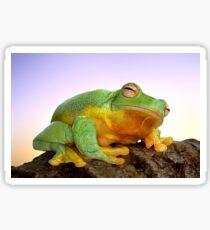 Sunrise Frog Sticker