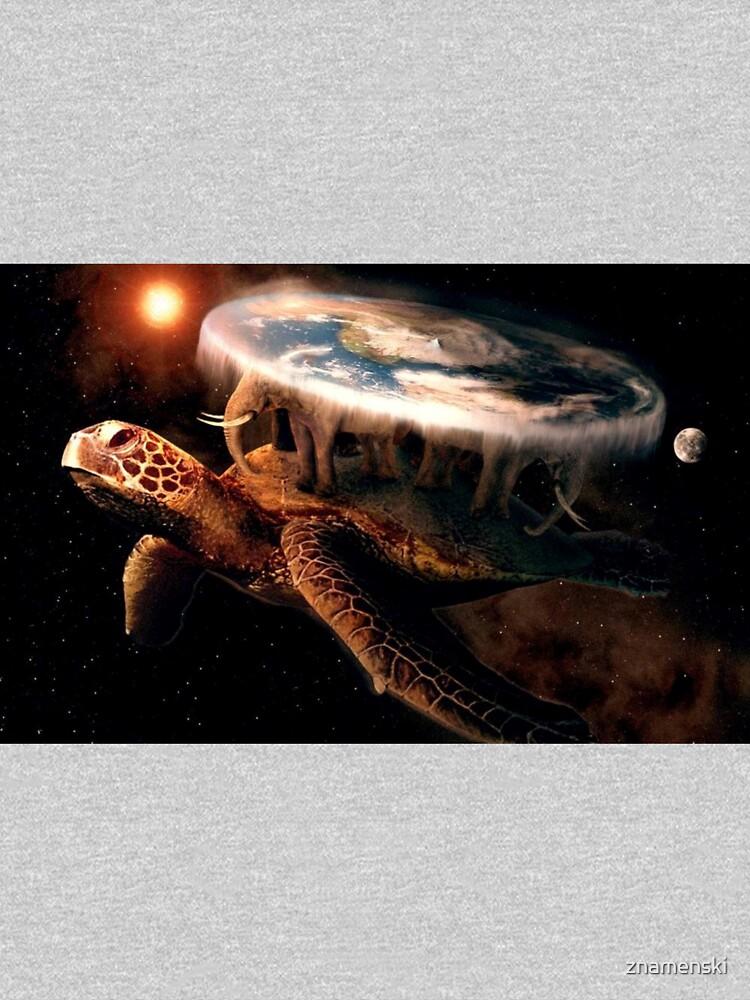 Flat Earth Turtle by znamenski