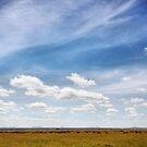 Under African Skies II by BlaizerB