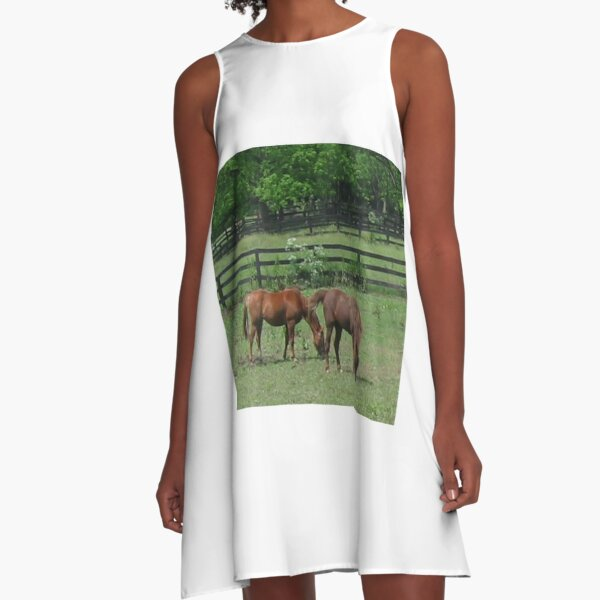 A couple of horses grazing in a field on a beautiful day! A-Line Dress