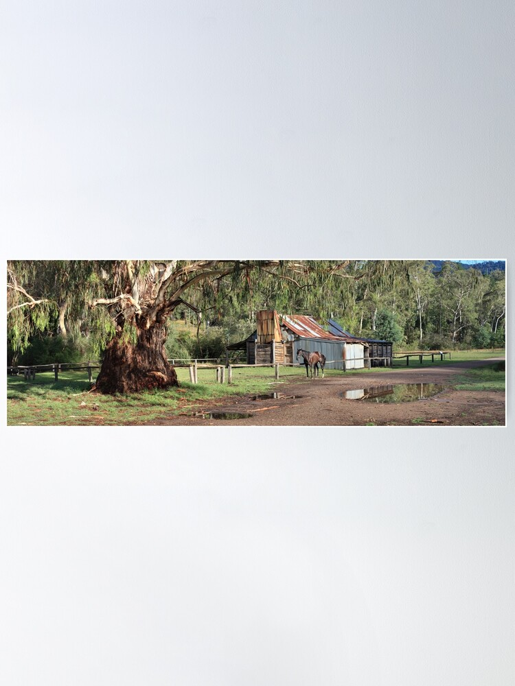 Alternate view of Frys Hut, Howqua Hills, Australia Poster
