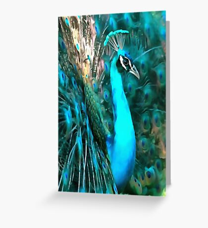 Peacock Plumage Greeting Card
