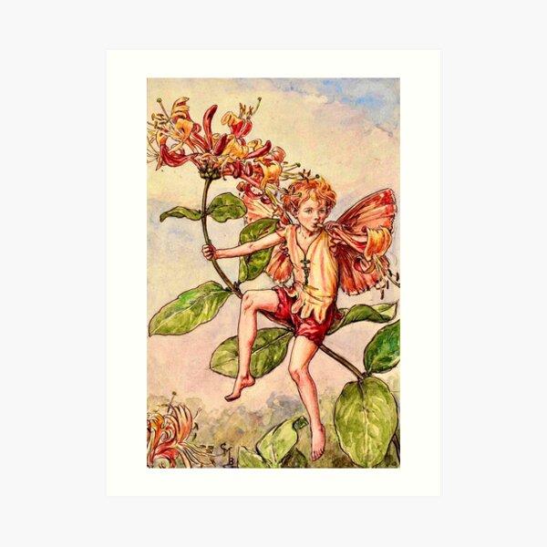 """""""The Honeysuckle Fairy"""" by Cicely Mary Barker  Art Print"""
