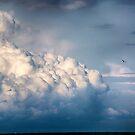 Fly Away by ishotit4u