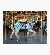 Historic Children's Carousel Horse  Photographic Print