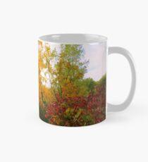 Autumn Trail Mug