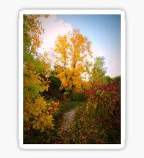 Autumn Trail Sticker