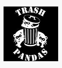 Trash Panda Photographic Print