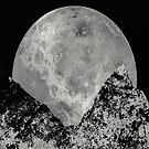 Lunar Rising by Printpix