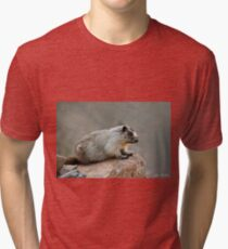 Hoary Marmot on a Boulder Tri-blend T-Shirt